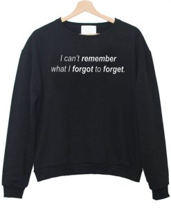 I Can't Remember What I Forgot To Forget Sweatshirt