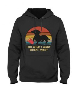 I Do What I Want Hoodie